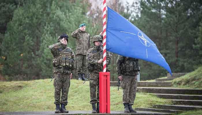 Focus: в бундестаге считают, что НАТО не в силах
